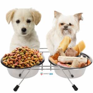 De ce să alegi bolurile speciale pentru hrana câinilor?