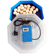 Clocitoare Incubator electric CLEO 5 TH cu termohigrometru