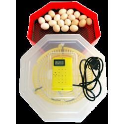 Clocitoare Incubator electric CLEO 5T cu termometru digital